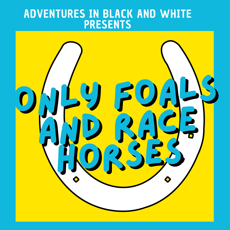 adventuresinblackandwhite.co.uk